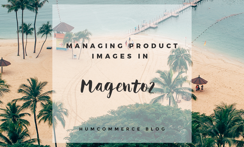 Feature Image - Managing product images in Magento 2